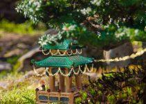 Las 10 mejores razones para tener un árbol de bonsái en casa