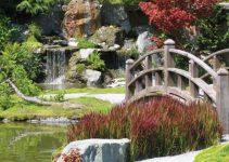 Combinando el estanque Koi y el bonsái en su jardín