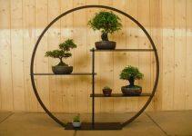 Cómo exhibir su bonsái usando los estantes