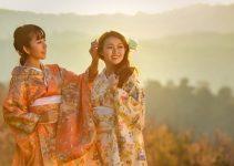 Tres razones por las que el bonsái es importante para la cultura japonesa